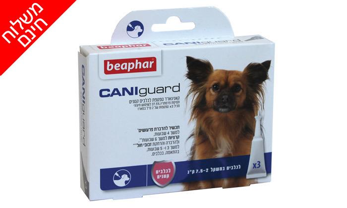 5 מארז אמפולות נגד פרעושים וקרציות בכלבים CANIguard - משלוח חינם