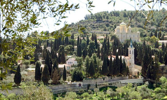 8 חופשת קיץ במתחם האירוח ציפורי, הרי ירושלים