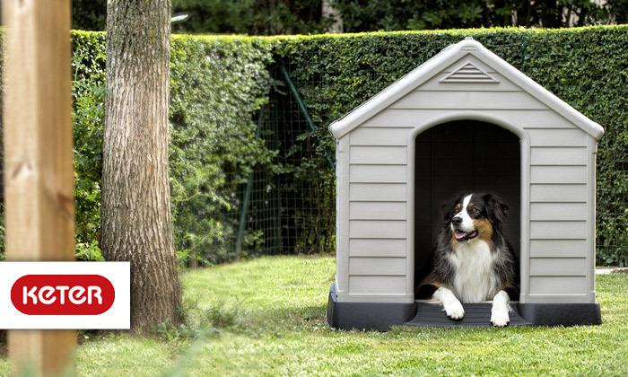 2 כתר: מלונה לכלב דגם DOG HOUSE