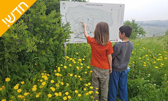 2 פארק נאות קדומים באזור מודיעין - פעילויות קיץ לכל המשפחה