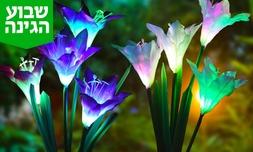 פרח סולארי נטען לחצר