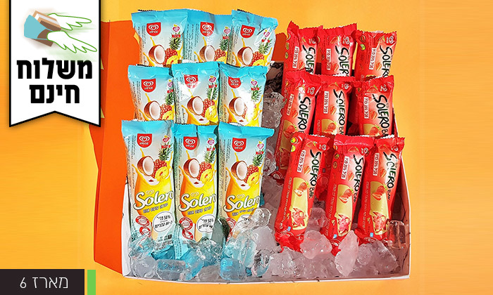 5 מארז גלידות כולל משלוח חינם עד הבית למגוון ערים