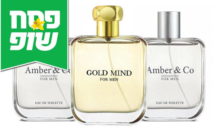 2 שלישיית בשמים לגבר Amber&Co או Gold Mind