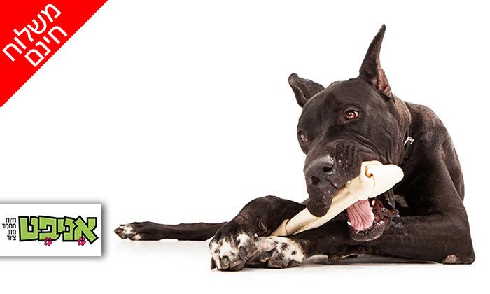 2 שני מארזים של עצם קשר לבנה לכלב KAZOO - משלוח חינם