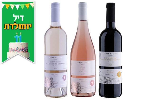 6 מארז יינות כשרים למהדרין, שמן זית ודבש במשלוח חינם מיקב גוש עציון