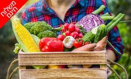 ירקות במשלוח עד הבית