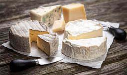 סדנת גבינות עם השף ג'אקומו