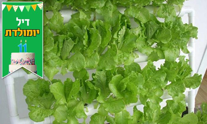 4 דיל לזמן מוגבל: ערכת גידול הידרופוני לגידול ירקות בבית