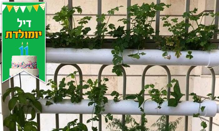 9 דיל לזמן מוגבל: ערכת גידול הידרופוני לגידול ירקות בבית