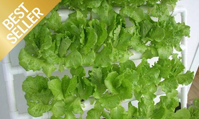 4  ערכת גידול הידרופוני לגידול ירקות בבית