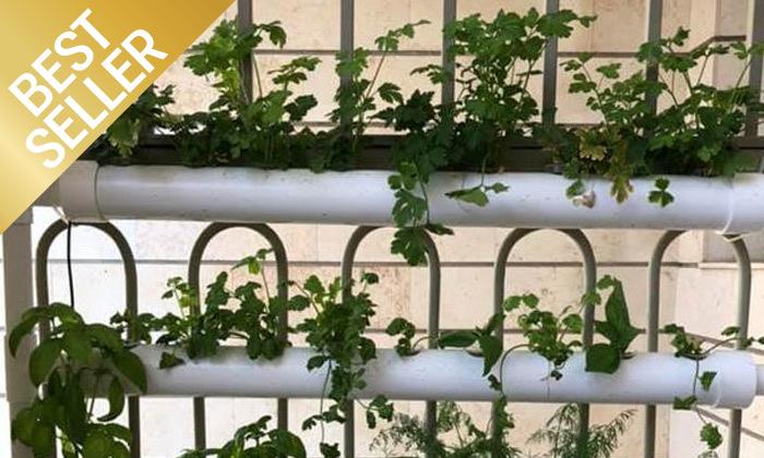 9  ערכת גידול הידרופוני לגידול ירקות בבית