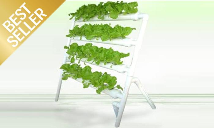 3  ערכת גידול הידרופוני לגידול ירקות בבית
