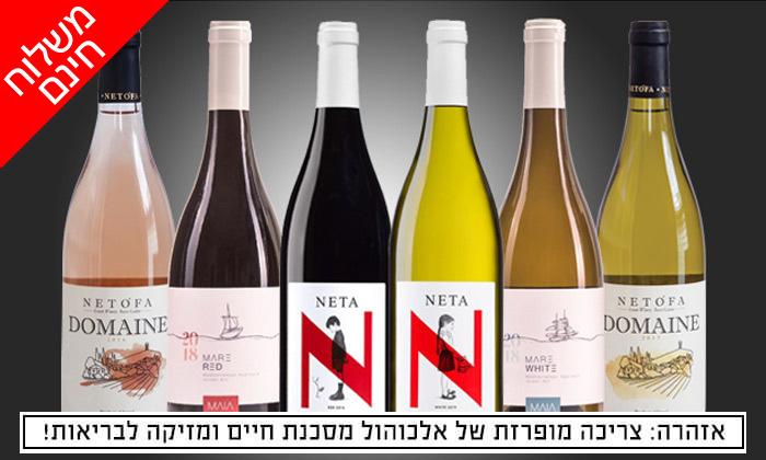 2 מארזי יינות לבחירה מ-House of Wine במשלוח חינם