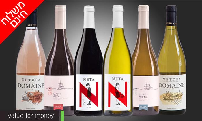 3 מארזי יינות לבחירה מ-House of Wine במשלוח חינם