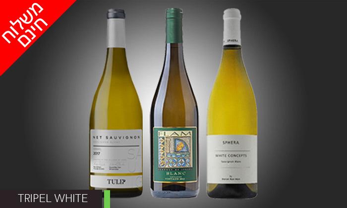 5 מארזי יינות לבחירה מ-House of Wine במשלוח חינם
