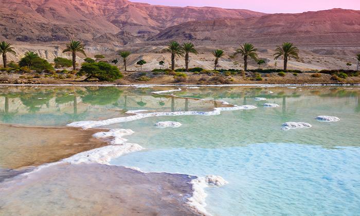 7 חופשה בכפר הנופש אלמוג סמוך לחופי ים המלח