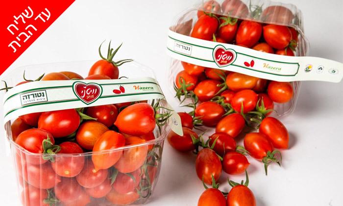 3 מארזי ירקות ופירות ממשק נטורזה במשלוח עד הבית למגוון יישובים