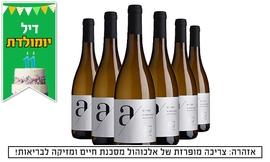 משלוח 6 בקבוקי אדיר A לבן