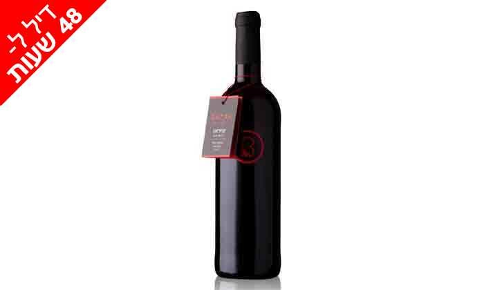 3 דיל ל-48 שעות: מארז 6 יינות כשרים מ-Bazak Winery