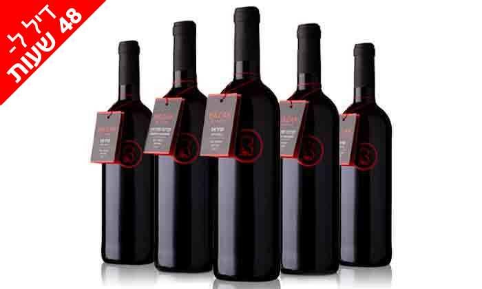 7 דיל ל-48 שעות: מארז 6 יינות כשרים מ-Bazak Winery