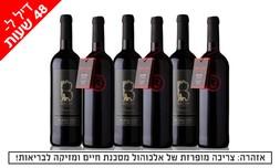 6 יינות Bazak Winery במשלוח