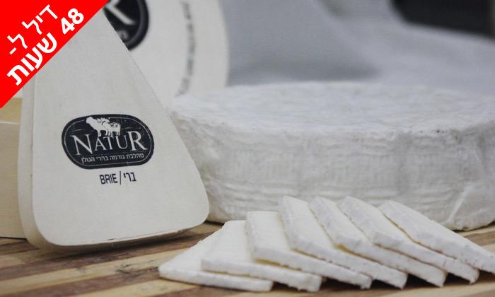 2 ל-48 שעות: מארז גבינות בוטיק פרימיום ממחלבת NATUR במשלוח חינם