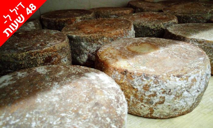 3 ל-48 שעות: מארז גבינות בוטיק פרימיום ממחלבת NATUR במשלוח חינם
