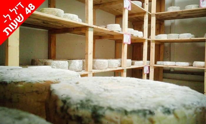 6 ל-48 שעות: מארז גבינות בוטיק פרימיום ממחלבת NATUR במשלוח חינם
