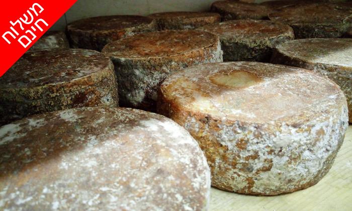 """4 מארז 1 ק""""ג גבינות בוטיק פרימיום ממחלבת NATUR במשלוח חינם למגוון יישובים"""