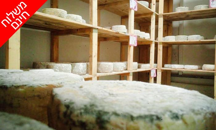 10 מארזי גבינות בוטיק ויין במשלוח למגוון מיקומים, מחלבת NATUR