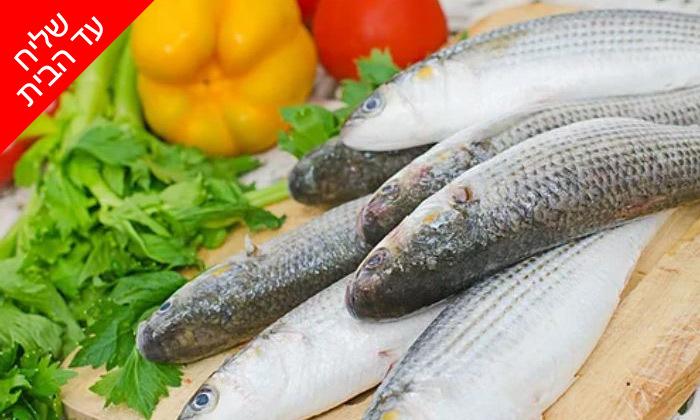 """4 מארז כ-4 ק""""ג דגים טריים מבוטיק Fly Fish במשלוח עד הבית"""