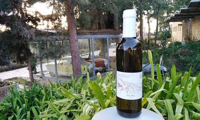 7 ל-73 שעות: סיור זוגי ביקב גוש עציון עם טעימות ובקבוק יין מתנה