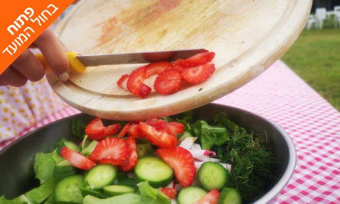 5 קטיף ירקות עם שק ירקות לקחת הביתה - משק הכוכבים בורגתה