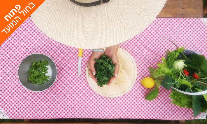 7 קטיף ירקות עם שק ירקות לקחת הביתה - משק הכוכבים בורגתה