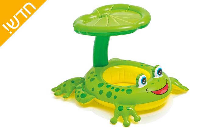 2  גלגל ים צפרדע עם צלון
