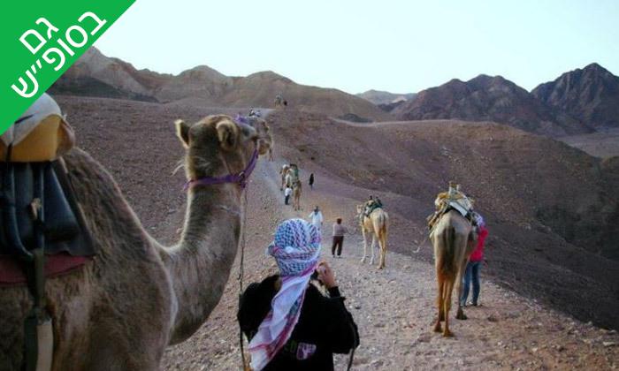 """3 טיול גמלים משפחתי כולל אירוח בדואי מסורתי ב'חוות הגמלים', גם בסופ""""ש"""