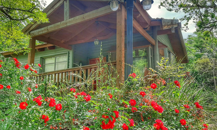 5 כפר הנופש נופי גונן בגליל: חופשה בבקתת עץ עם ג'קוזי וארוחת בוקר