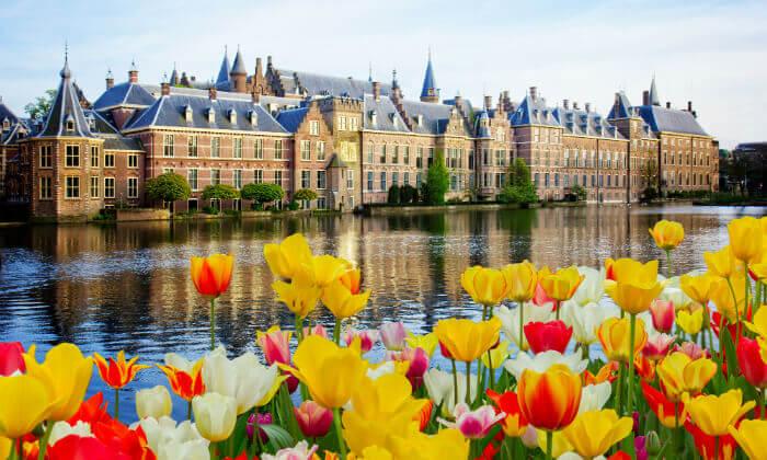 3 חופשה משפחתית בהולנד, כולל יולי-אוגוסט וראש השנה