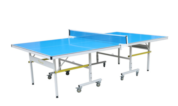 2 שולחן פינג פונג חוץ מקצועיEUROLEAP