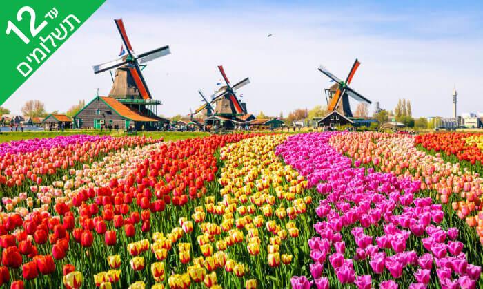 7 חופשת טוס וסע להולנד עם כל המשפחה - טיסות והשכרת רכב לכל התקופה