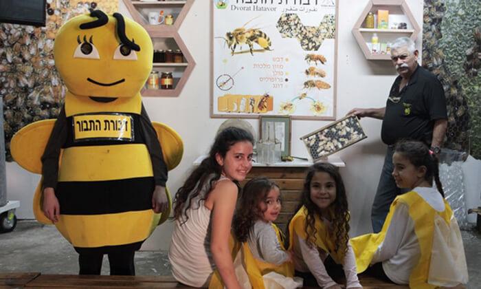3 דבורת התבור - מרכז מבקרים כפרי
