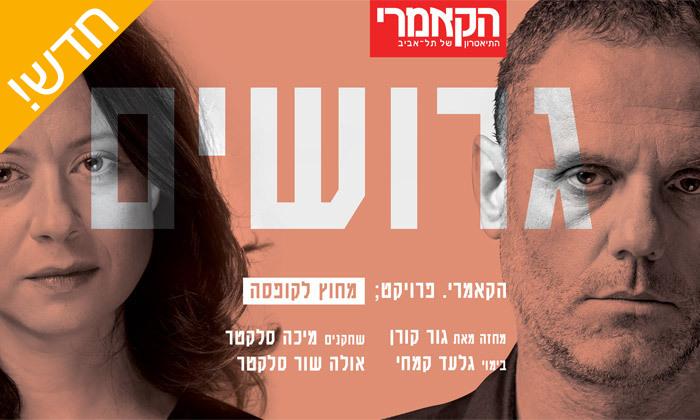 2 כרטיסים להצגה גרושים, תיאטרון הקאמרי תל אביב