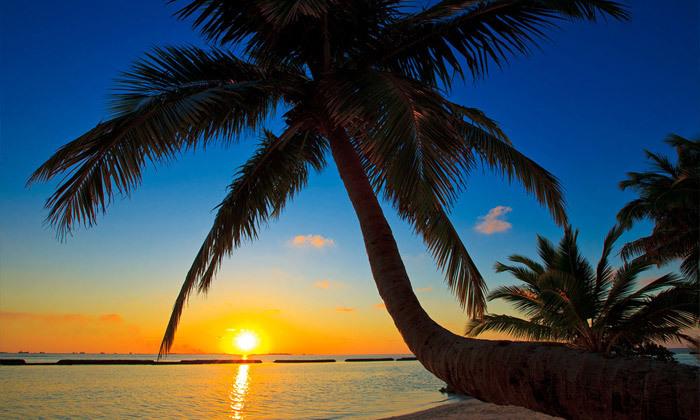 4 חופשה באי טרופי: טיסות ישירות למלדיביים בסוכות