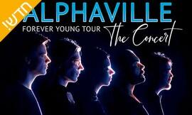 השבוע: להקת Alphaville בישראל!