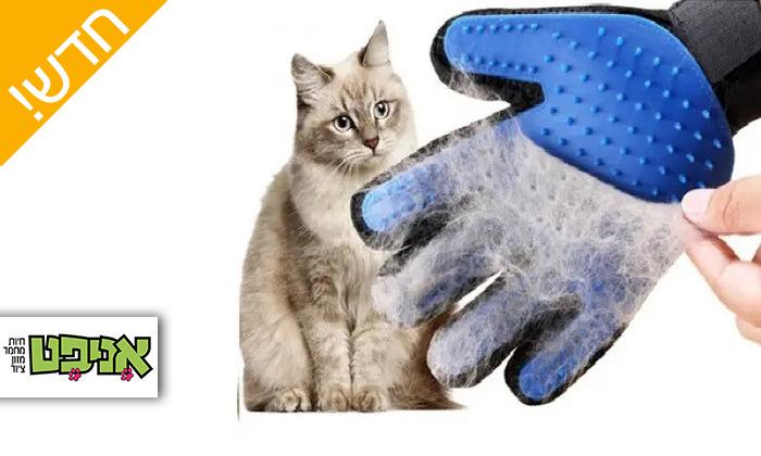 2 אניפט: כפפת טיפוח וסירוק לפרוות לכלבים ולחתולים