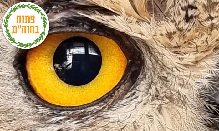 """6 חוות החיות של שלמה, נוקדים - מעל 100 מינים של בע""""ח מהארץ ומהעולם, גם בסוכות"""