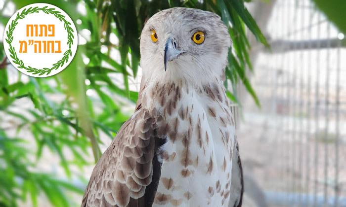 """3 חוות החיות של שלמה, נוקדים - מעל 100 מינים של בע""""ח מהארץ ומהעולם, גם בסוכות"""
