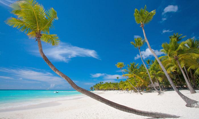 5 8 ימים בגן עדן: טיסות ישירות לזנזיבר עם מזוודות, גם בסוכות