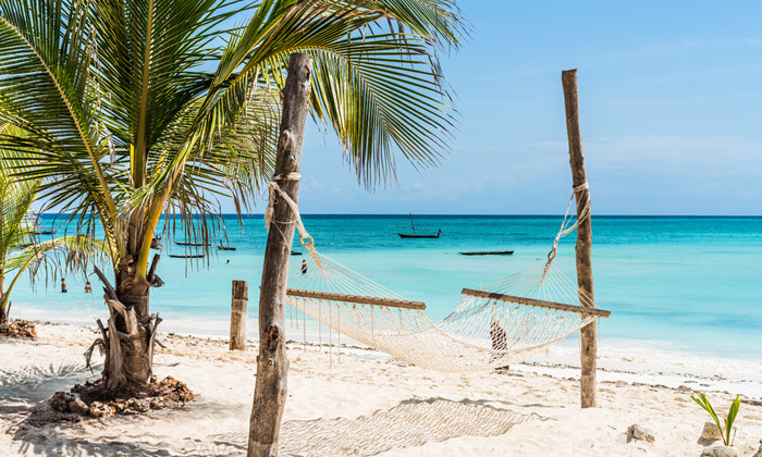 3 8 ימים בגן עדן: טיסות ישירות לזנזיבר עם מזוודות, גם בסוכות