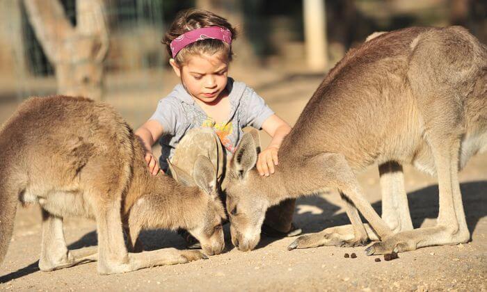 2 גן גורו - פארק אוסטרלי ייחודי לכל המשפחה
